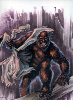 http://meta-religion.com/Paranormale/Cryptozoology/images/Hominids/yowie.jpg